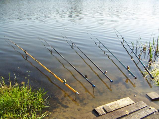 длинные удочки для дальней рыбалки фото