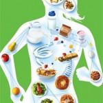 Как правильно питаться после тренировки?