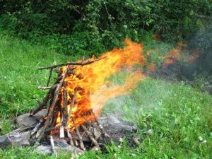 Как правильно развести костер в лесу?
