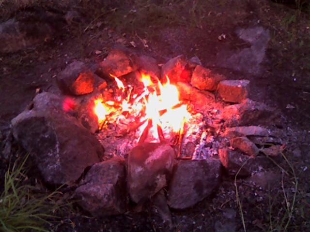 Как осветить лагерь в ночном лесу?