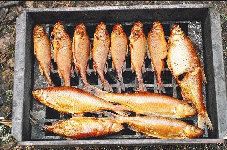 Как исподьзовать краску для копчения рыбы?