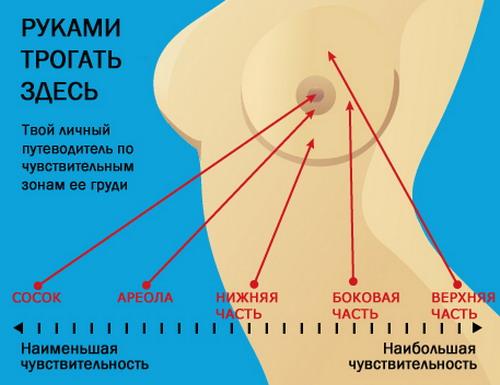 Зоны возбуждения женской груди